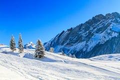 В швейцарском альп Стоковые Фотографии RF