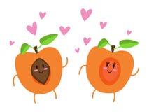 Влюбленность абрикоса иллюстрация штока