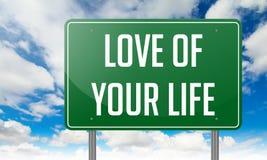 Влюбленность вашей жизни на зеленом указателе шоссе Стоковая Фотография