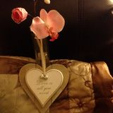 Влюбленность вся потребность u стоковое фото rf