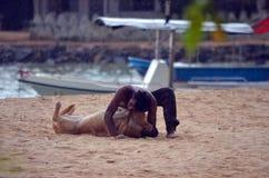 Влюбленность между человеком Стоковая Фотография RF