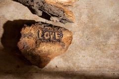 Влюбленность предпосылки. Стоковое фото RF