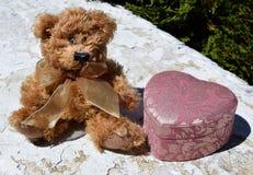 Влюбленность плюшевого медвежонка Стоковое Фото