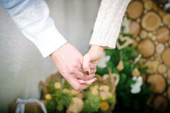 влюбленность совместно Стоковые Фотографии RF