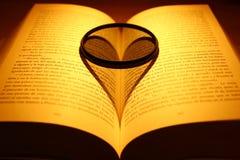 Влюбленность для чтения Стоковая Фотография