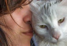 Влюбленность Exoression большой кошки Стоковые Фотографии RF