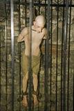 В dungeon стоковая фотография rf