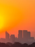 Гаага в золотом свете Стоковые Фото