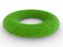 габаритное кольцо 3 зеленого цвета травы Стоковые Изображения