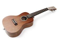 Гаваиская гавайская гитара стоковое изображение
