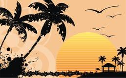 Гаваиская тропическая рамка background2 пляжа Стоковая Фотография