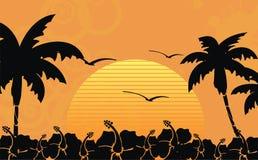 Гаваиская тропическая рамка background3 пляжа Стоковые Фото