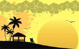 Гаваиская тропическая рамка background7 пляжа Стоковое фото RF
