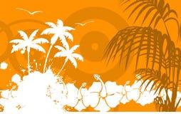 Гаваиская тропическая рамка background00 пляжа Стоковое Фото