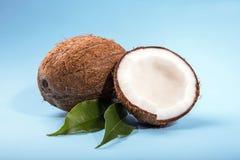 Гаваиские кокосы Естественные кокосы плодоовощей Тропических Брайна естественный кокос и свежих фруктов на яркой голубой предпосы Стоковое Фото