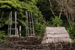 гаваиский висок Стоковые Фотографии RF
