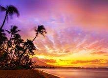 гаваиский заход солнца Стоковые Изображения RF