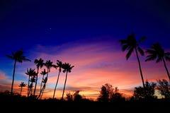 гаваиский заход солнца стоковое изображение