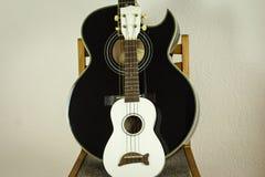 Гавайская гитара и акустическая гитара Стоковое фото RF