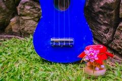 Гавайская гитара и подарки Стоковое Изображение