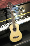Гавайская гитара и рояль Стоковые Изображения RF