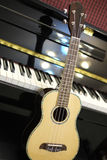 Гавайская гитара и рояль Стоковая Фотография