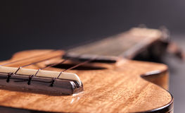 Гавайская гитара Стоковое фото RF