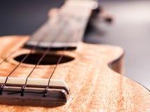 Гавайская гитара Стоковое Изображение RF