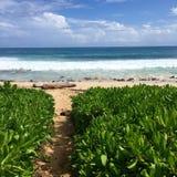 Гавайские островы kauai Стоковое фото RF