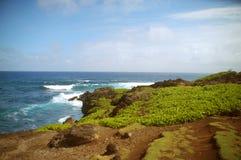 Гавайские островы maui Стоковое Фото
