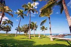 Гавайские островы oahu Стоковая Фотография