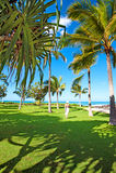 Гавайские островы oahu Стоковое фото RF