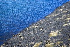 Гавань Бостон где оно встречает скалистый берег стоковое фото rf