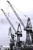 гавань кранов Стоковая Фотография