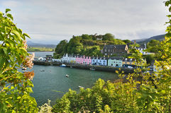 Гавань с пристанью и красочными зданиями стоковое изображение rf