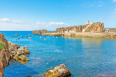 Гавань Camara de Lobos, Мадейры с рыбацкими лодками Стоковое Изображение