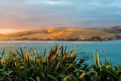 Гавань Hokianga, Northland Новая Зеландия стоковые фото