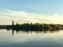 Гагары на озере стоковое фото rf