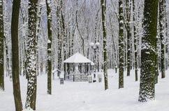 Газебо в лесистой зоне снежная зима в затишье Стоковые Изображения RF