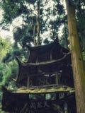 Газебо в лесе, Mount Qingcheng, провинция Dujiangyan, Сычуань, Китай стоковое фото rf