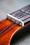 Гайка гавайской гитары и строка нейлона стоковое фото