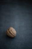 Гайка грецкого ореха отдыхая на темной предпосылке Стоковая Фотография