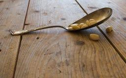 Гайка сосны Стоковые Фото