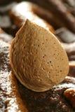 гайки вкусной еды шоколада миндалины золотистые сверх Стоковое фото RF