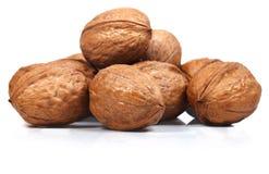 Гайки грецкого ореха в раковине на белой предпосылке Стоковая Фотография RF