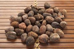 Гайки дерева ши на естественной предпосылке Стоковое Изображение