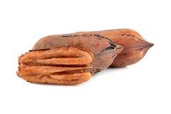3 гайки пекана Стоковая Фотография