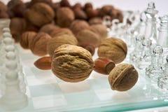 Гайки улучшают визуализирование эффективности мозга - шахмат, доску с гайками стоковое фото rf