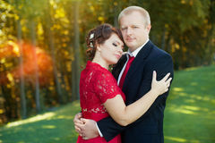Гай и девушка нежно обняли один другого стоя в луге в парке Стоковая Фотография RF