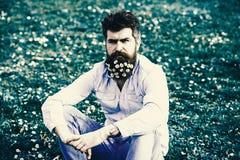 Гай смотрит славно с цветками маргаритки или стоцвета в бороде Битник на спокойной стороне сидит на траве Концепция весеннего вре стоковые фото